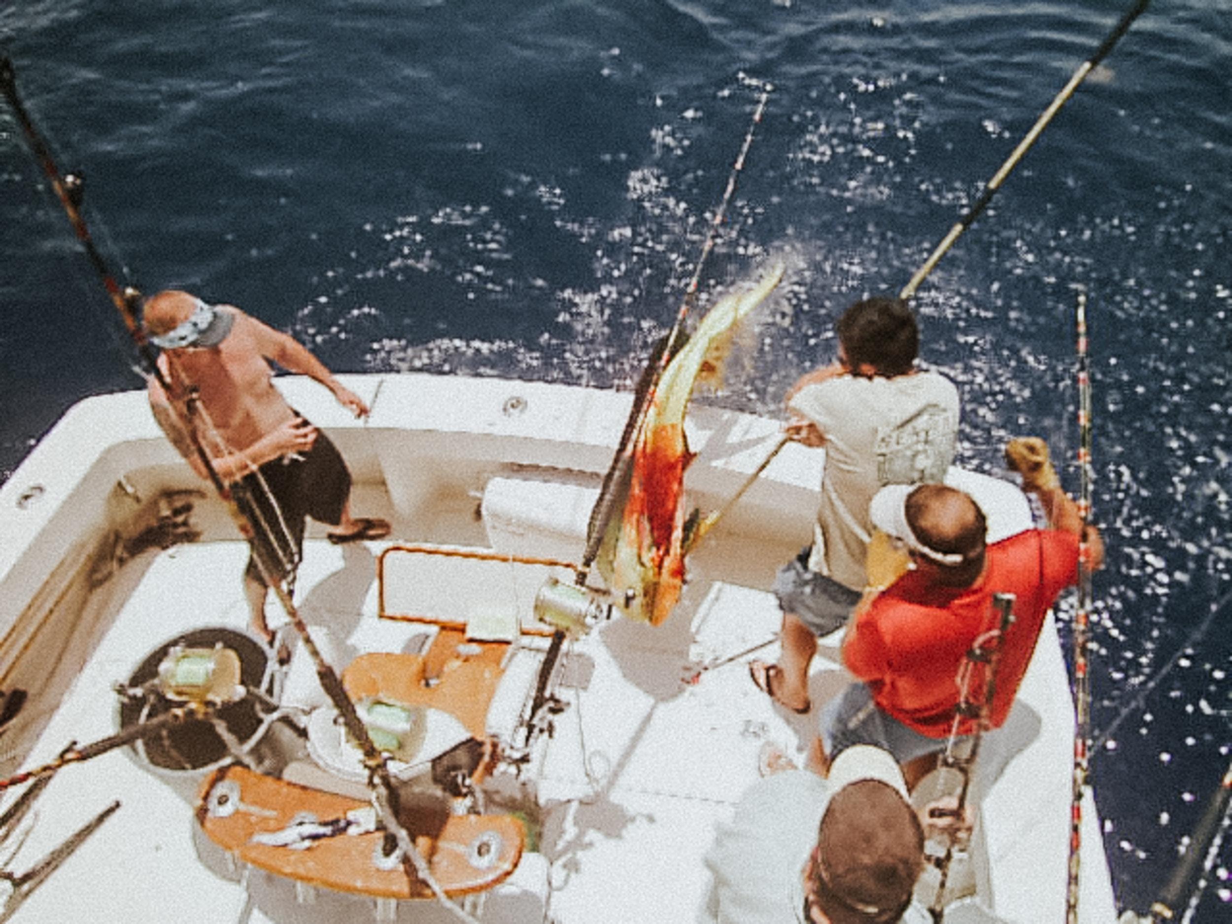 Panama-City-Beach-Charter-Fishing-Seawolf-Destin-Deep-Sea-Red-Snapper
