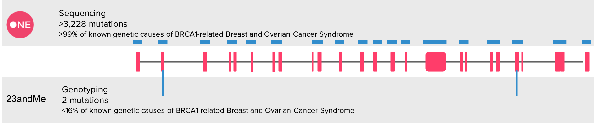 brca_one_23andme.png