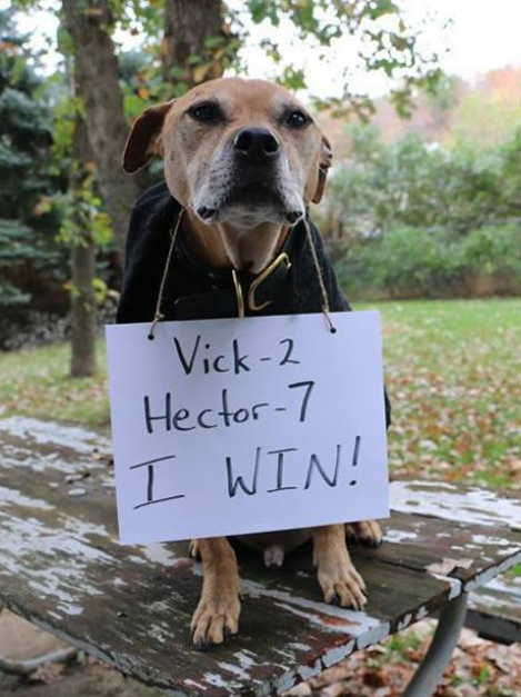Hector-pic-for-hector-fund.png