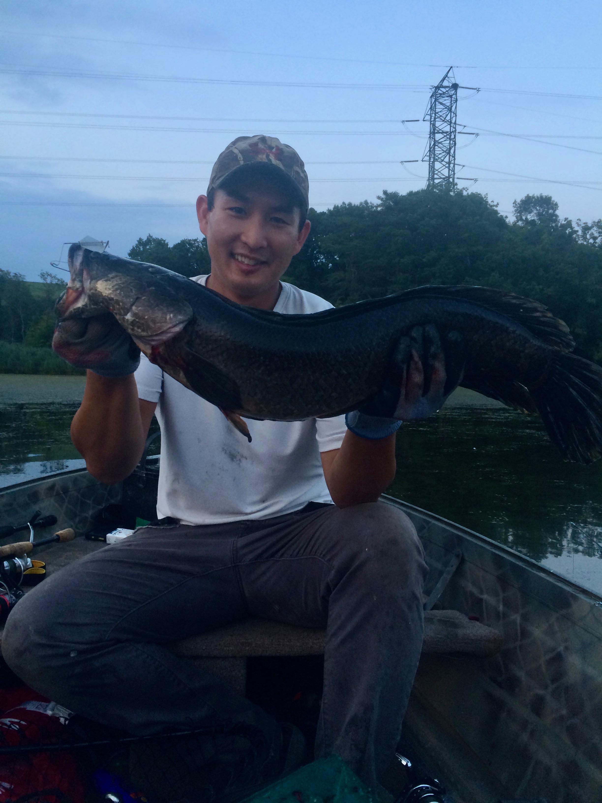 potomac snakehead fishing.jpg