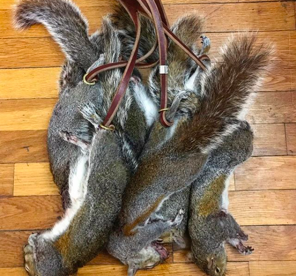squirrel hunting recipe.png