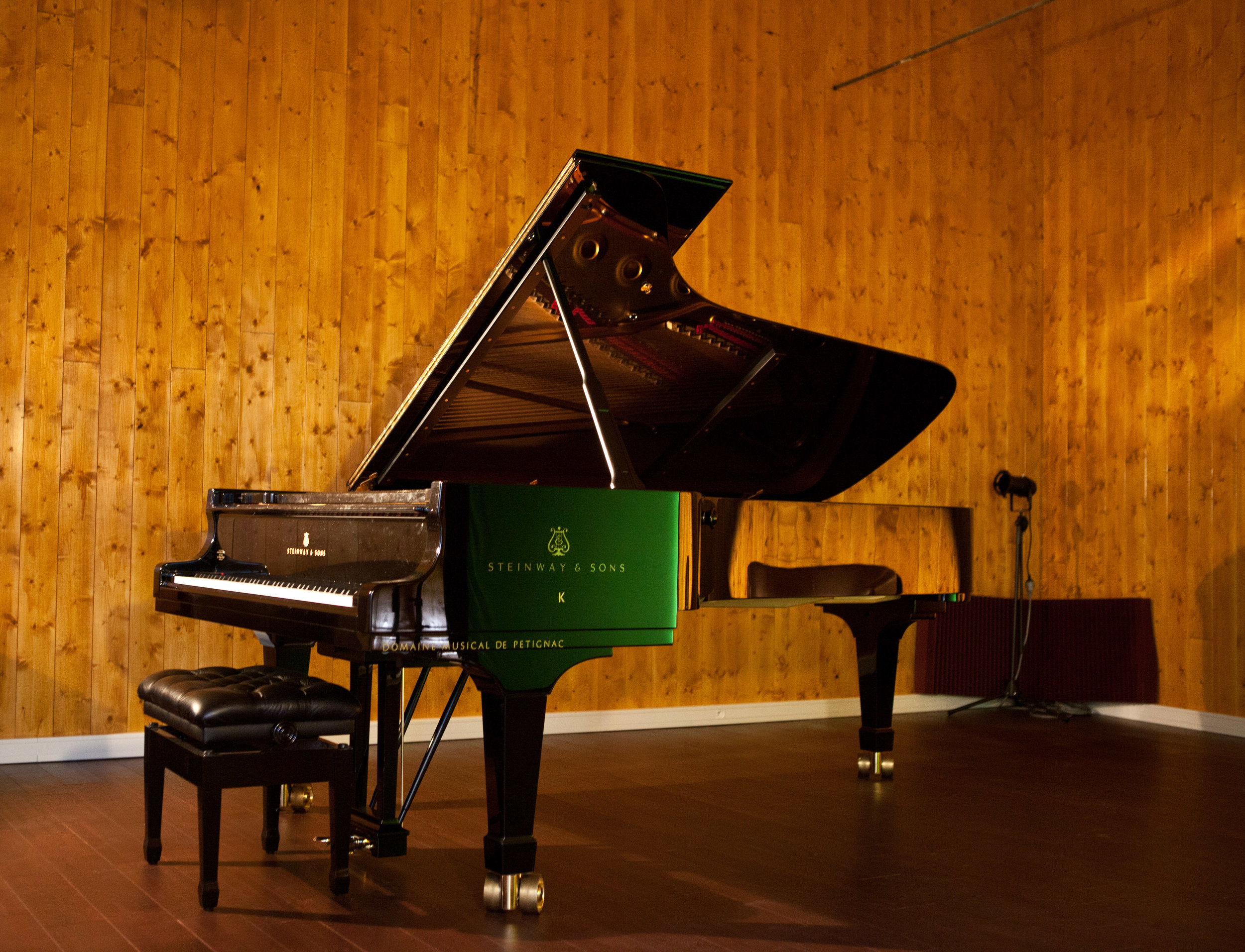 Steinway & Sons Grand Concert D 274 - Anatole Studio