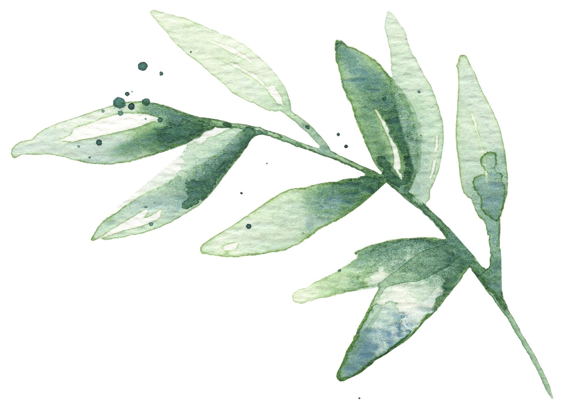watercolor_leaves_02+copy.jpg