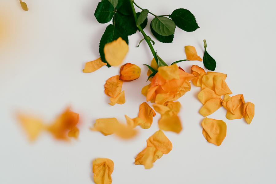 WEB Orange roses-6.jpg