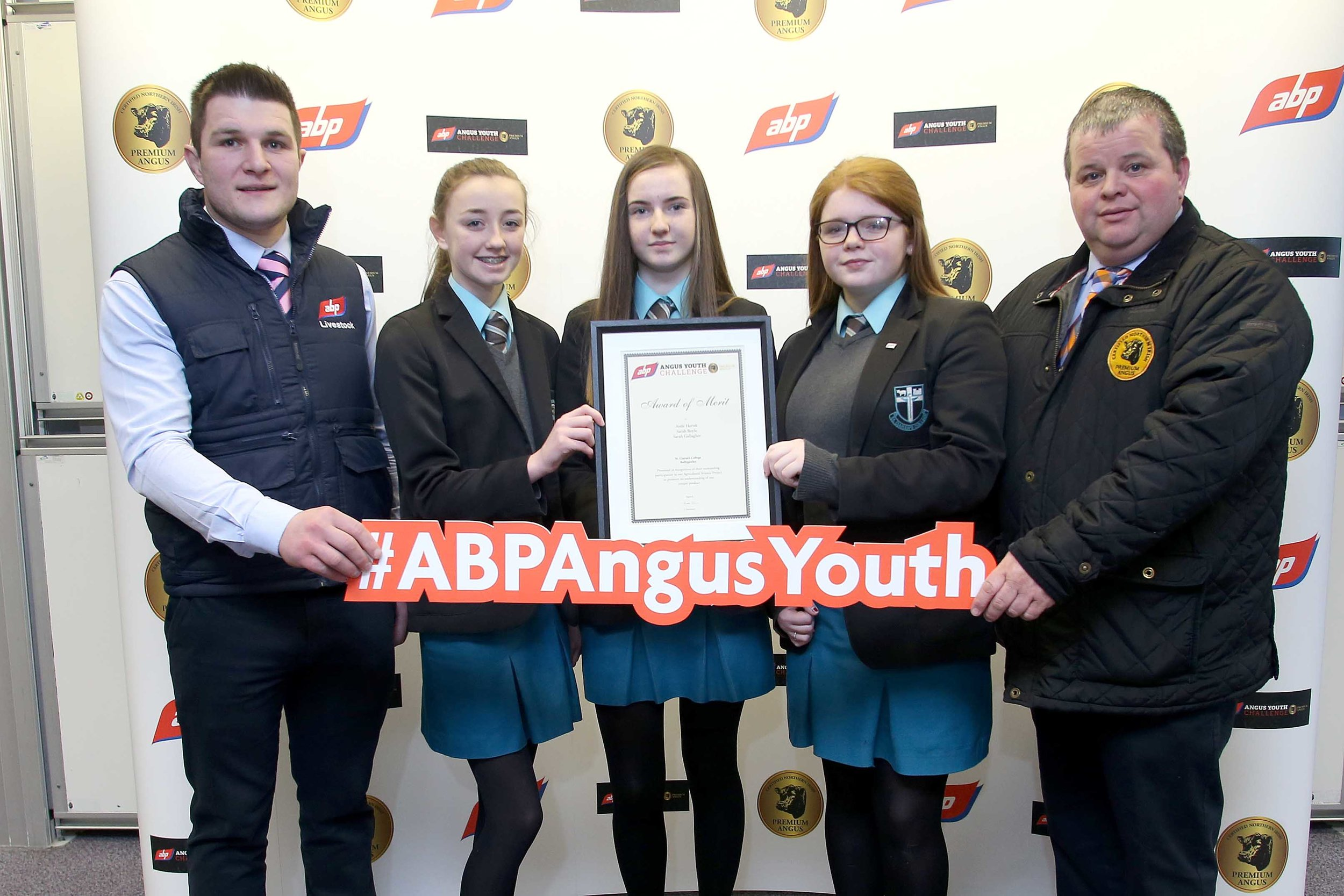 ABP YOUNG ANGUS 2.jpg
