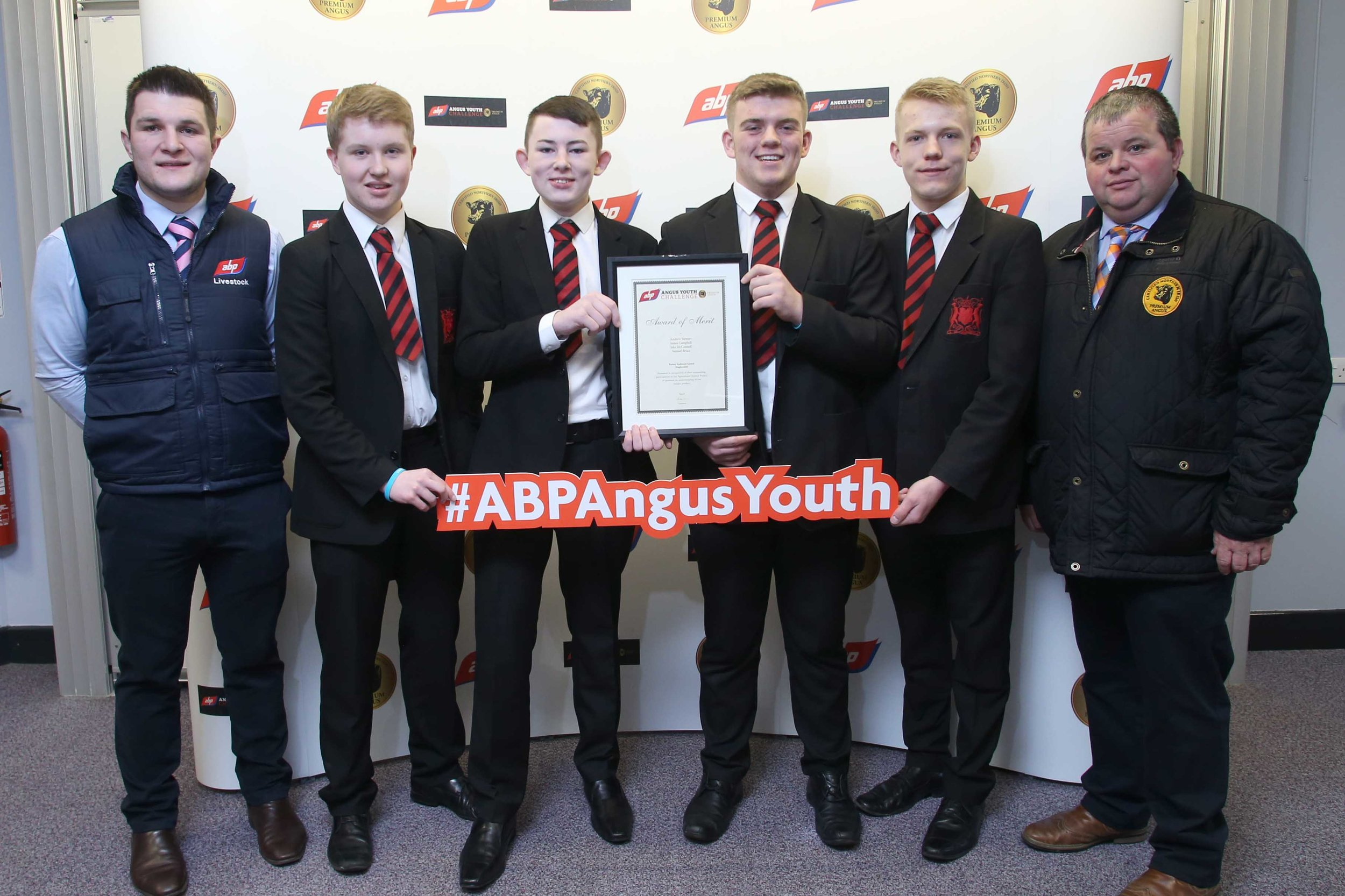 ABP YOUNG ANGUS 6.jpg