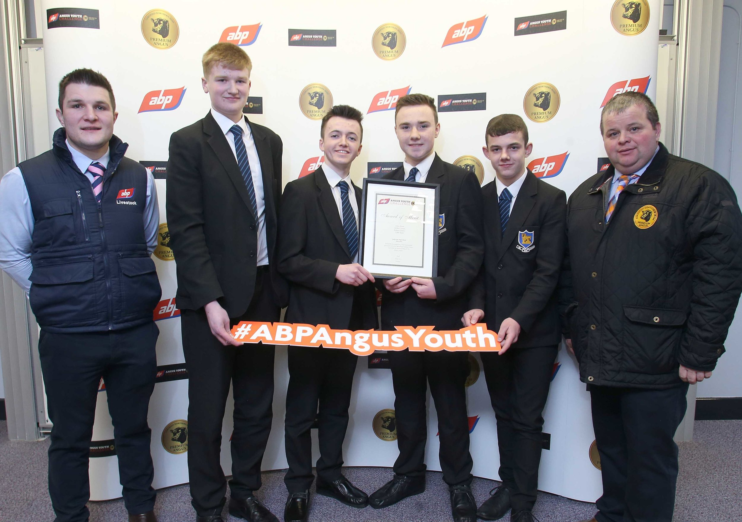 ABP YOUNG ANGUS 10.jpg