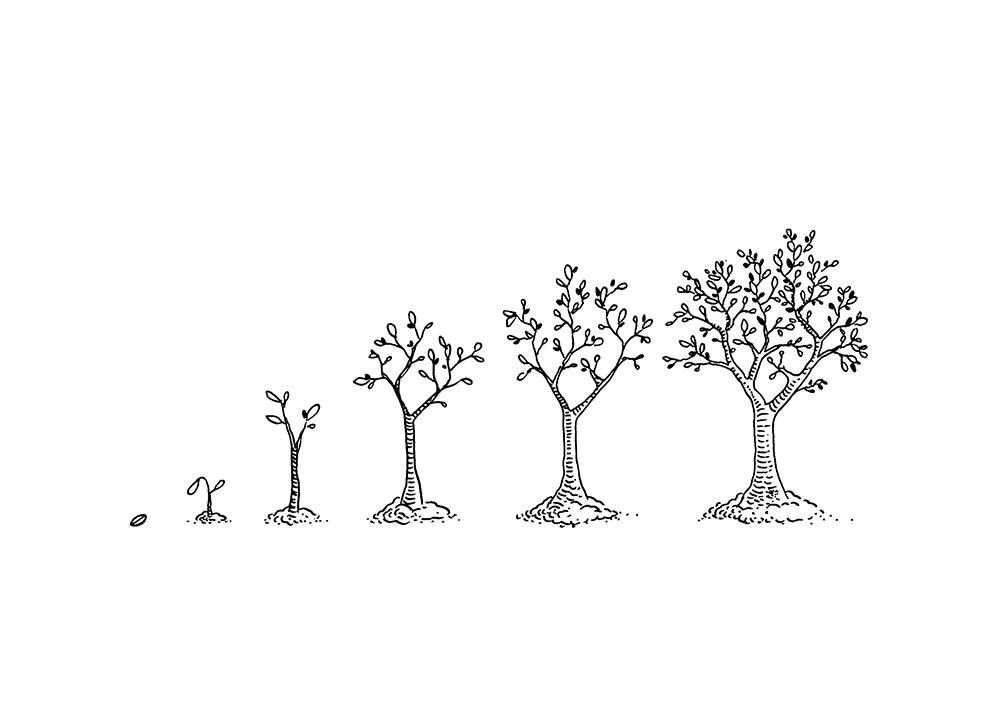 wendel-croissance copie.jpg
