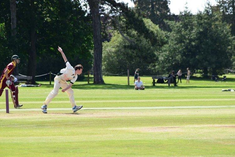 cricket+1.jpg