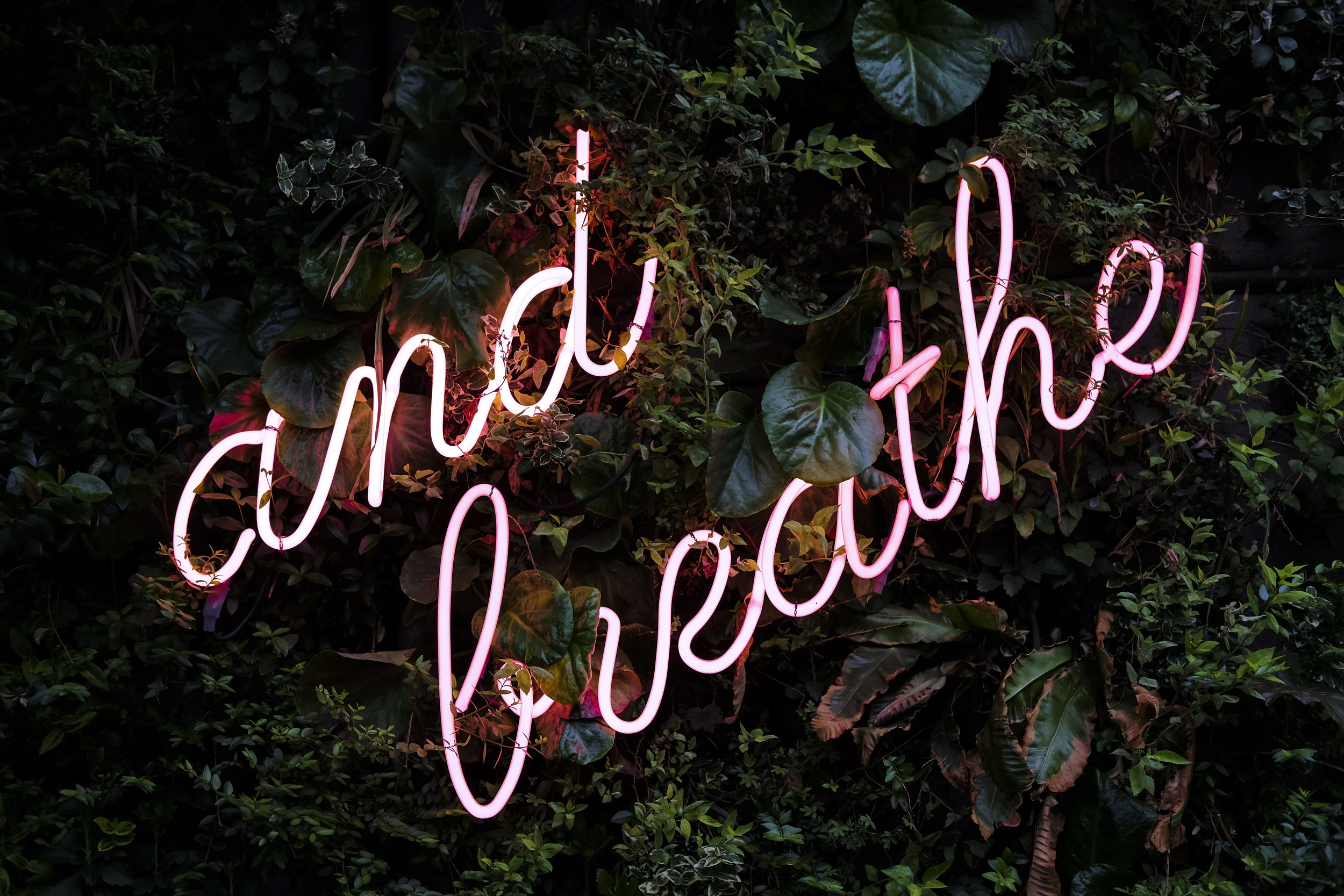 Breathing is an underrated stress reliever. Take several deep breaths to help yourself find center.