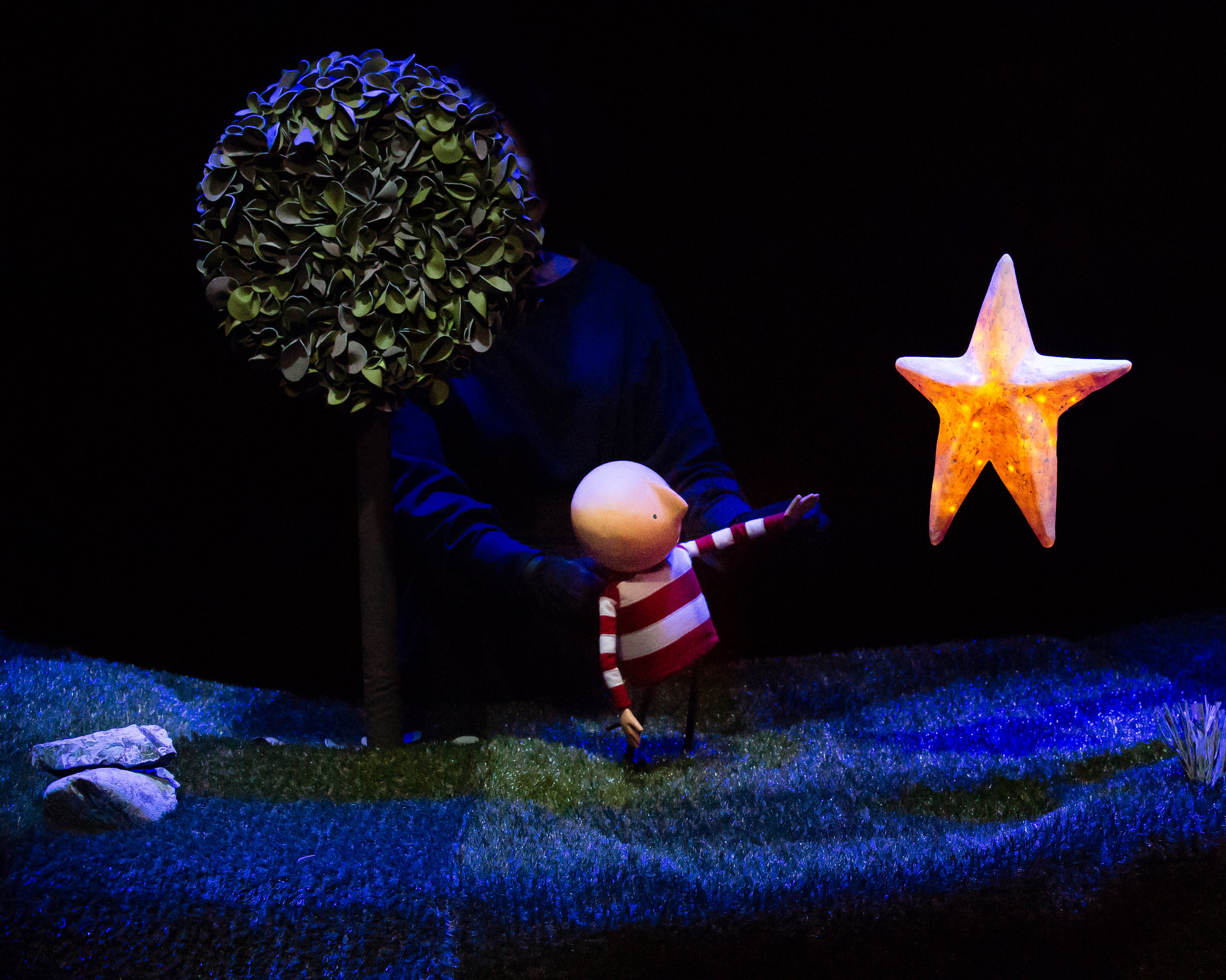 Once there was a boy who was always looking up. He dreamt of having a star as a friend. This is the story of his adventure.   Based on the beloved book by award-winning Irish author Oliver Jeffers, Branar Teatar do Pháistí are proud to present How to Catch a Star.   Past performances include its premiere in 2017 at the Galway International Arts Festival, Young at Art Belfast, Southbank Centre London, 10 Venue Irish National Tour, The Ark Residency Dublin, The Egg Children's Theatre Bath, UK  Suitable for children aged 4+