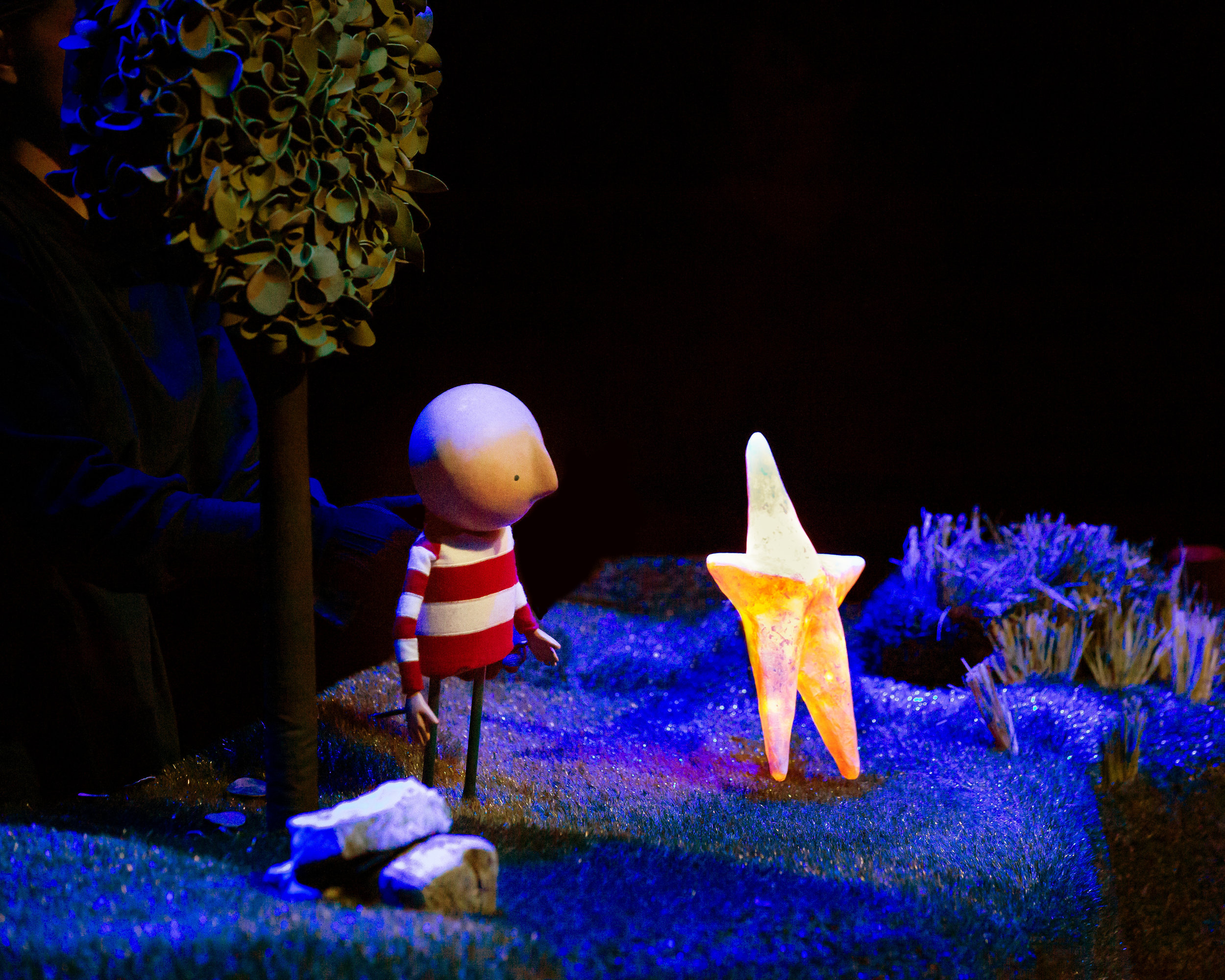 Boy and Star on Grass.jpg