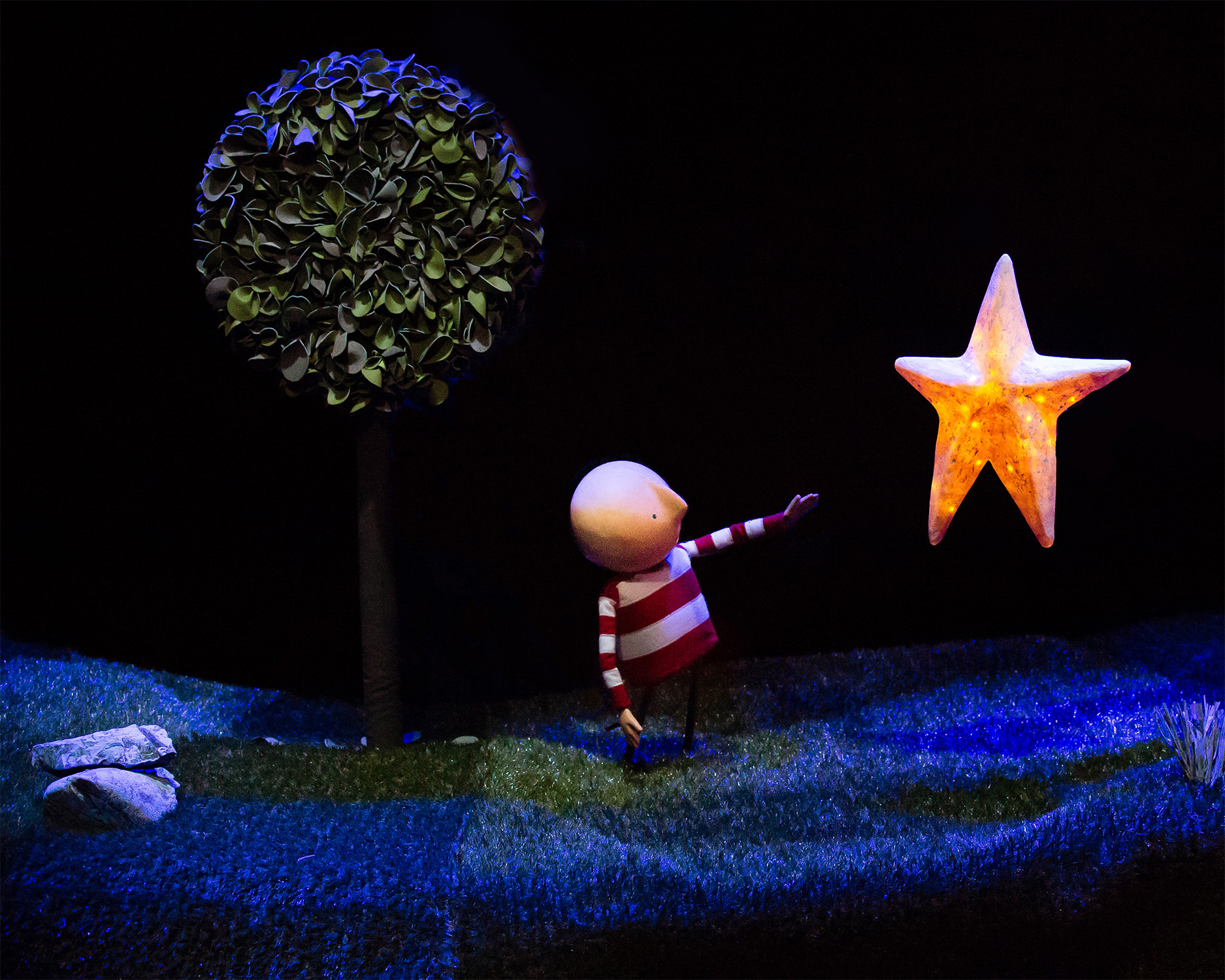 001KM Boy reaching for Star Anita Murphy 1.jpg