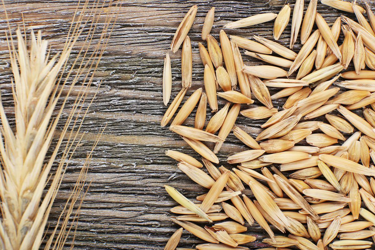 rye-grain-shutterstock.0.jpg