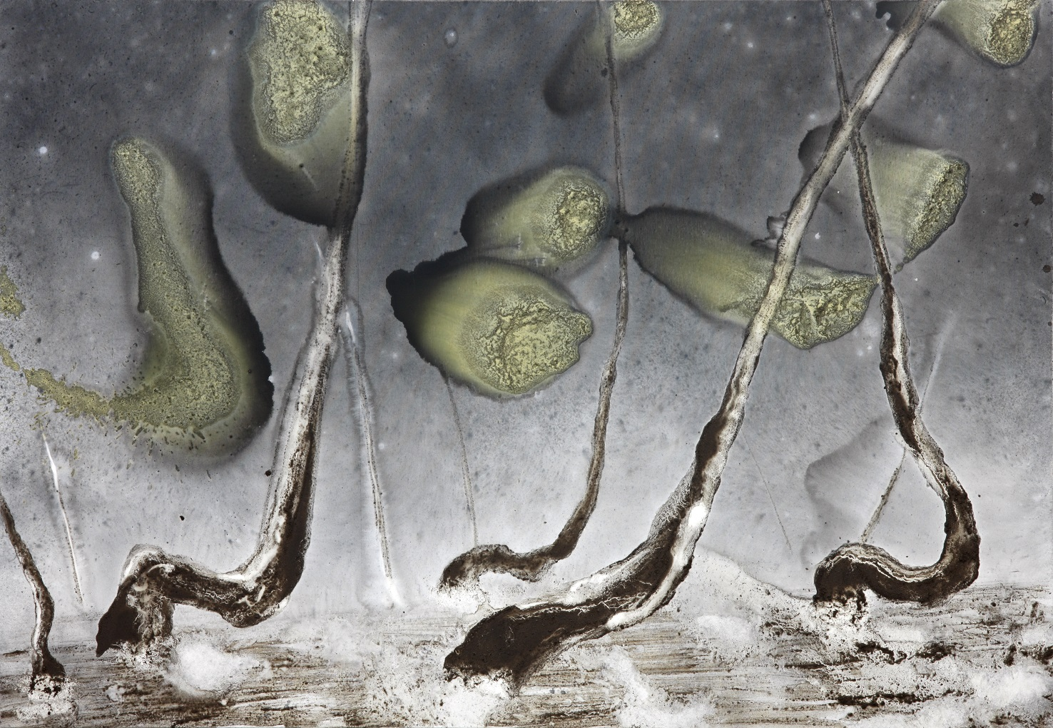 'Baciu'  Mixed-media on canvas  280 x 180cm  2015