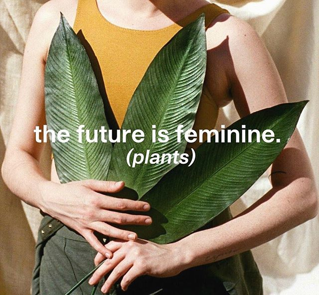 Did you know that only female cannabis plants produce bud? The future is feminine in so many ways 🙌🏼 Happy Friday!⁣ .⁣ via @prima⁣ . ⁣ #cannabis #futureisfeminine #cannabish #womeninweed #cannabislifestyle #cannabiswomen