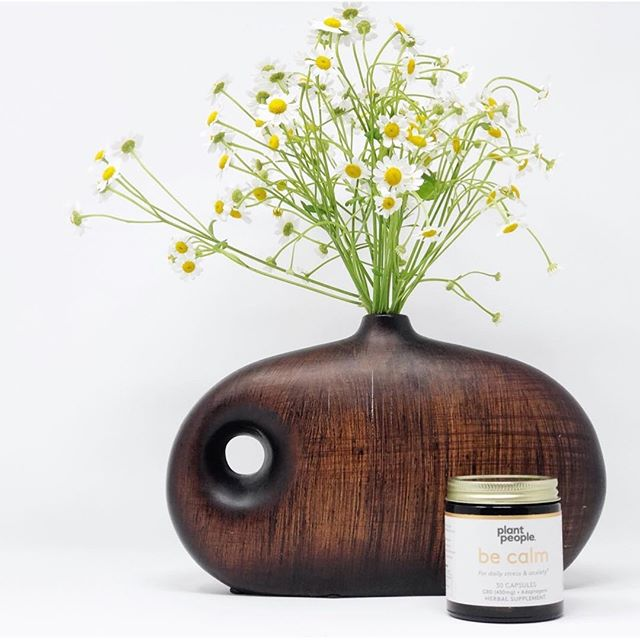 Has anyone tried CBD supplements? Plant People's Be Calm supplements are non-psychoactive, helping you with your anxiety throughout the day. (Also, eyeing that gorgeous vase in the back!!)⁣ .⁣ via @svnspace⁣ .⁣ #cbd #plantpeople #wellness #cannabis #selfcare