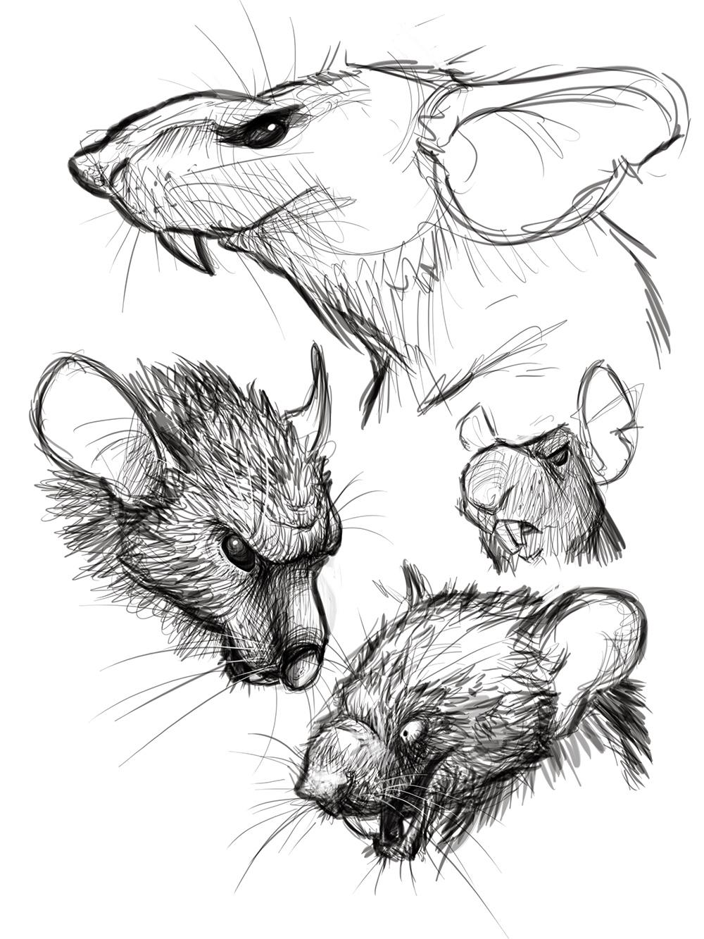 2014_08_14 - 04_rat_sketch.jpg
