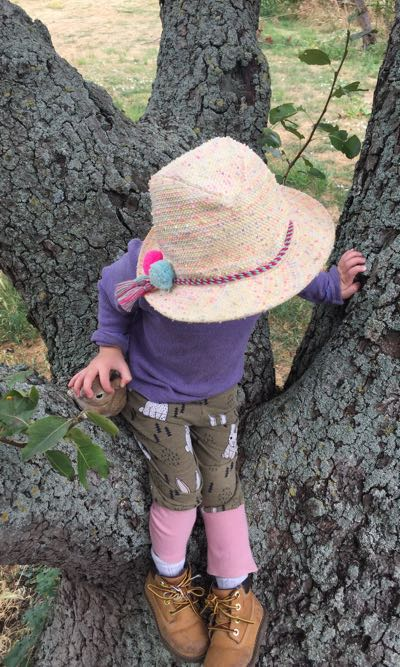Confidence is developed through physical challenges such as games that involve climbing trees as well as freedom to climb at will.