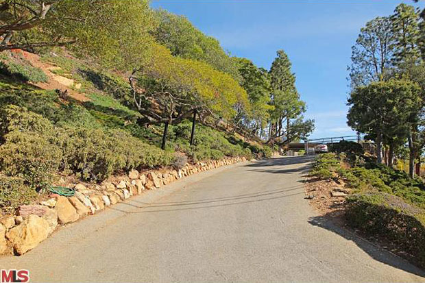 The view up the long, private driveway.