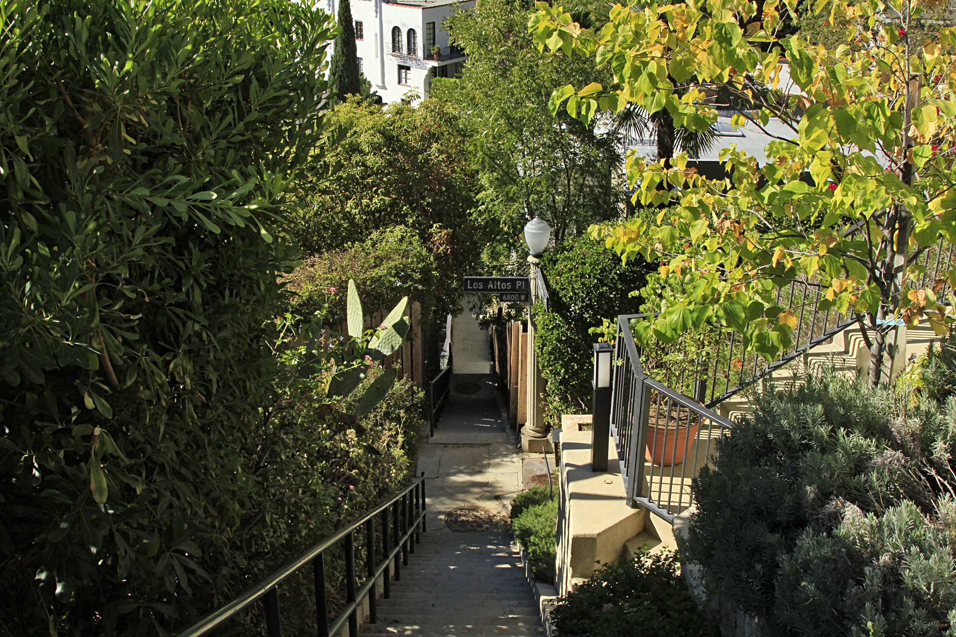 Although there are other hillside homes very close to the tower, the benefit of the riding the elevator, which is protected by a locked iron gate, belongs solely to the residents of the four apartments. Without the elevator, the residents would have to traverse a series of stairs, walkways and half-hidden bridges to get home after parking their cars at street level.