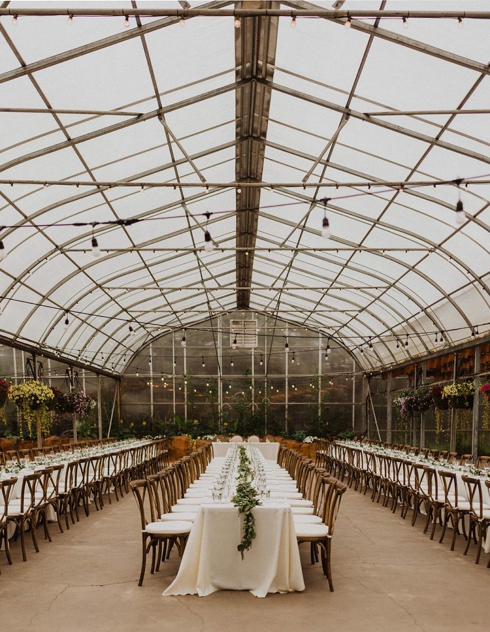 Wedding-Saskatoon-Farm-Reception.jpg