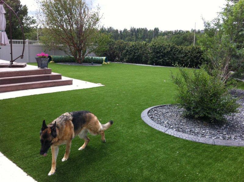 EZ Grass 3.jpg