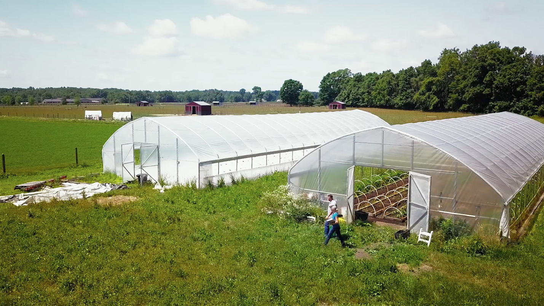 Sara greenhouses copy.jpg