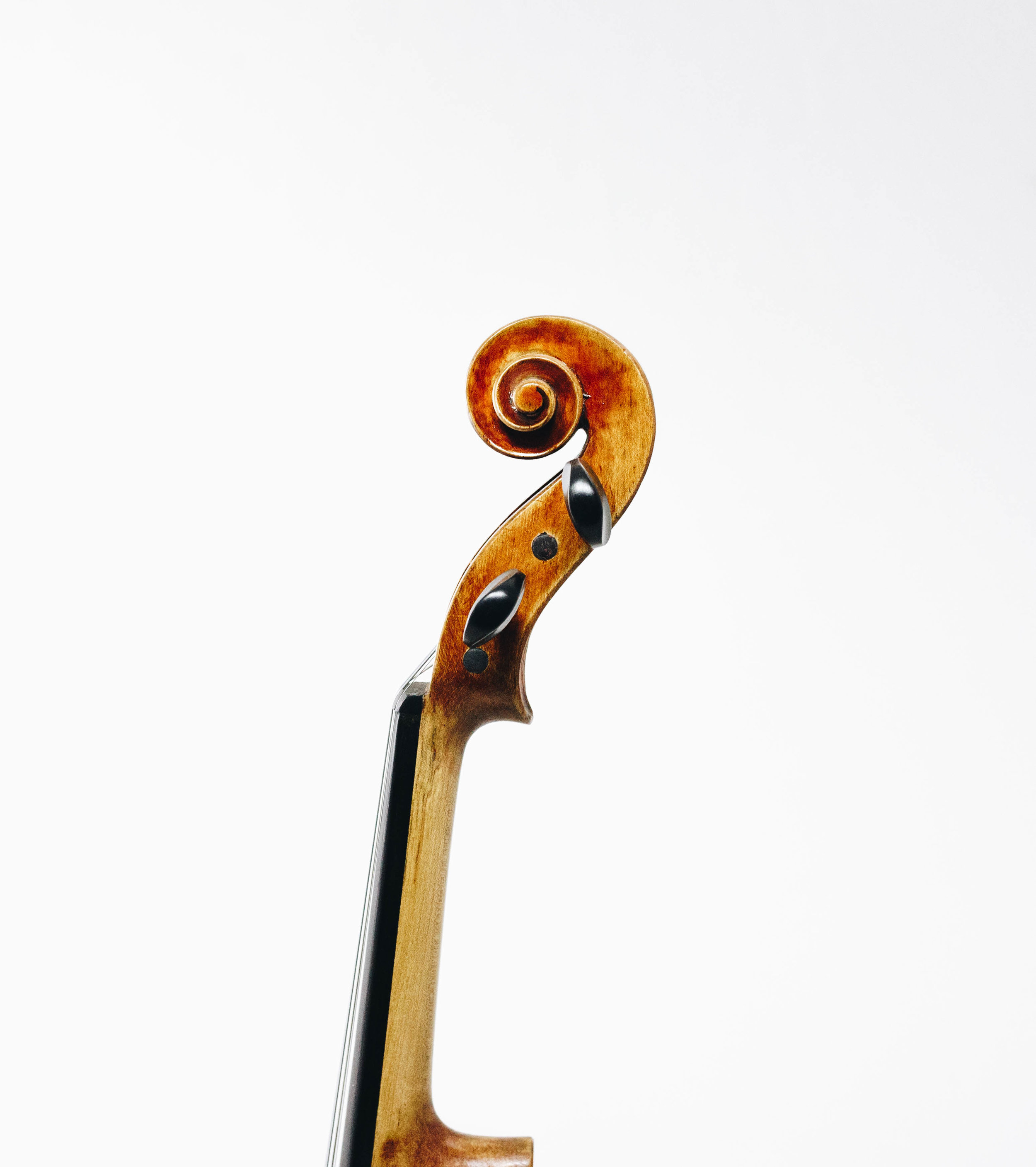 The Violin Shop Nashville Rental Scroll