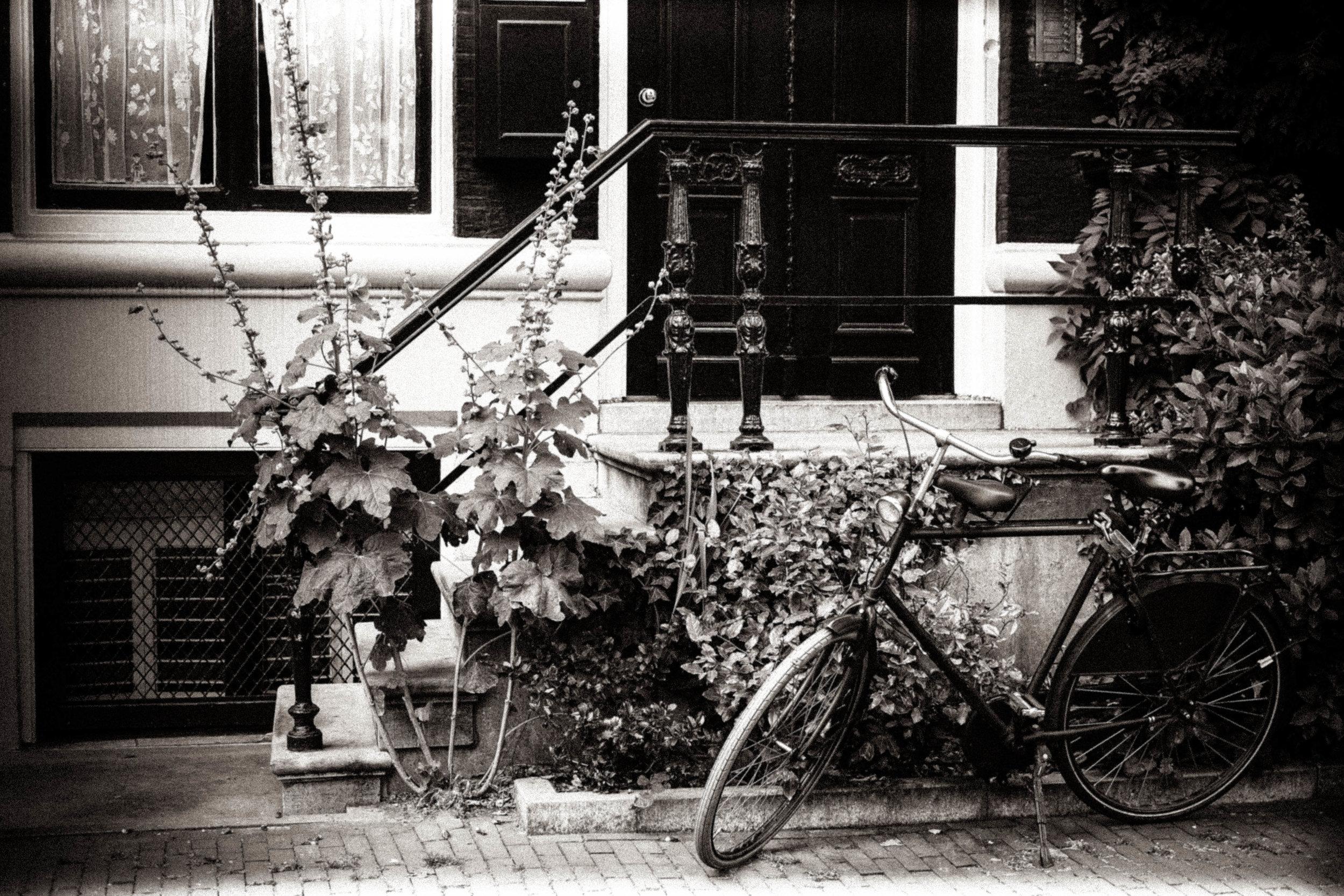 Black&White -188.jpg
