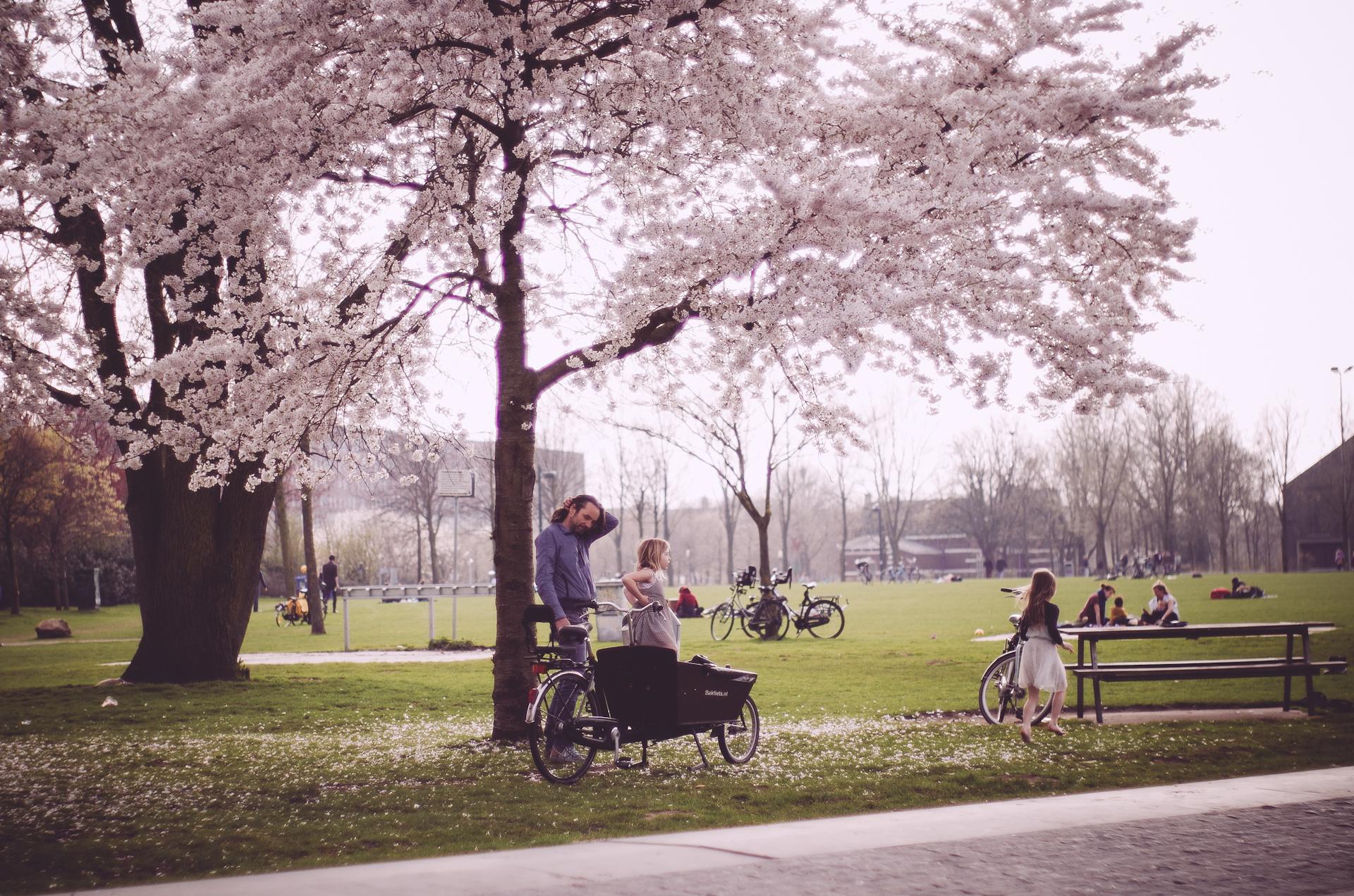 2018 APR Amsterdam Cherry Blossom Pink le-14.jpg
