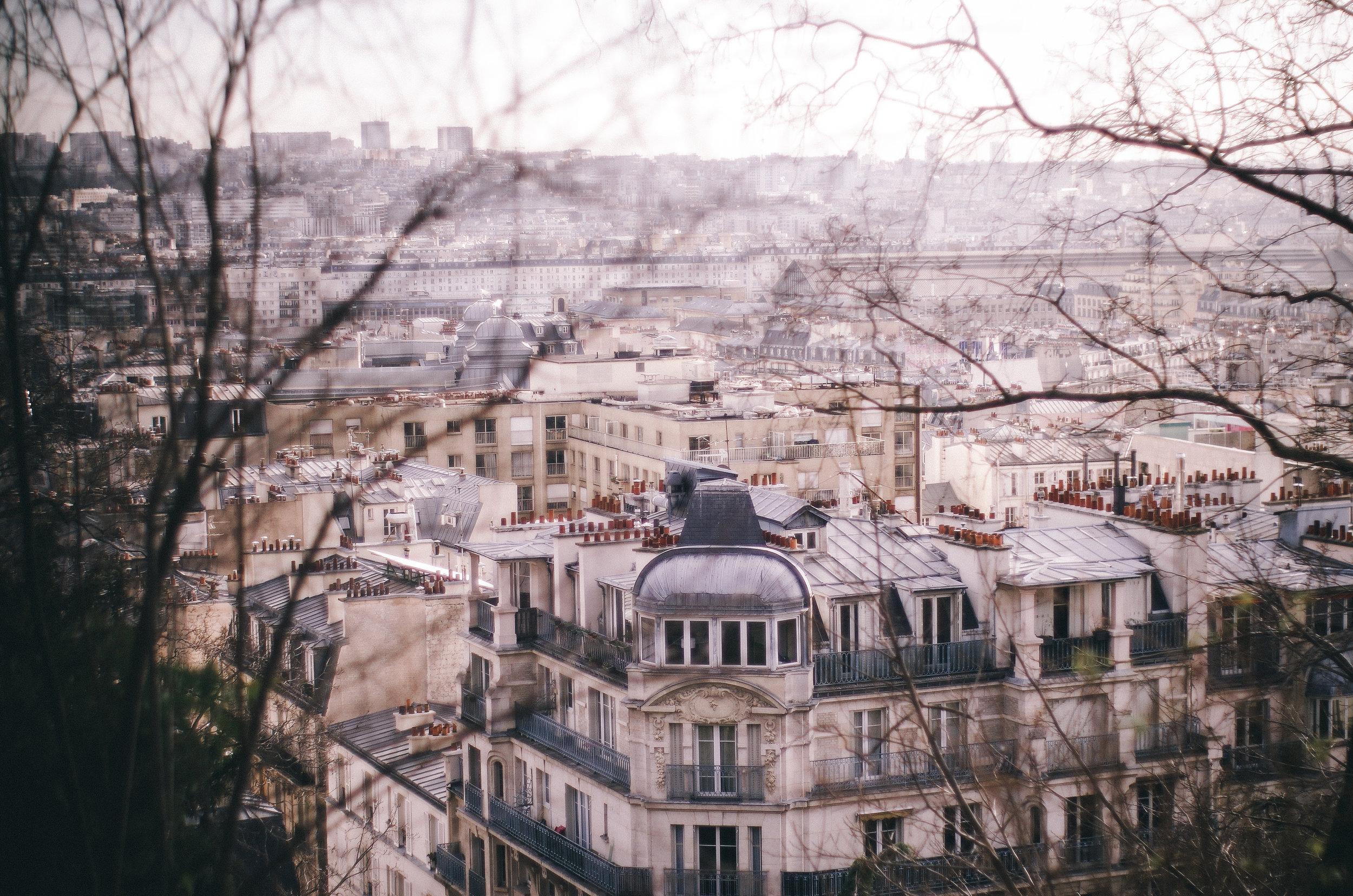 2019 JAN Paris with Mitzy-22.jpg