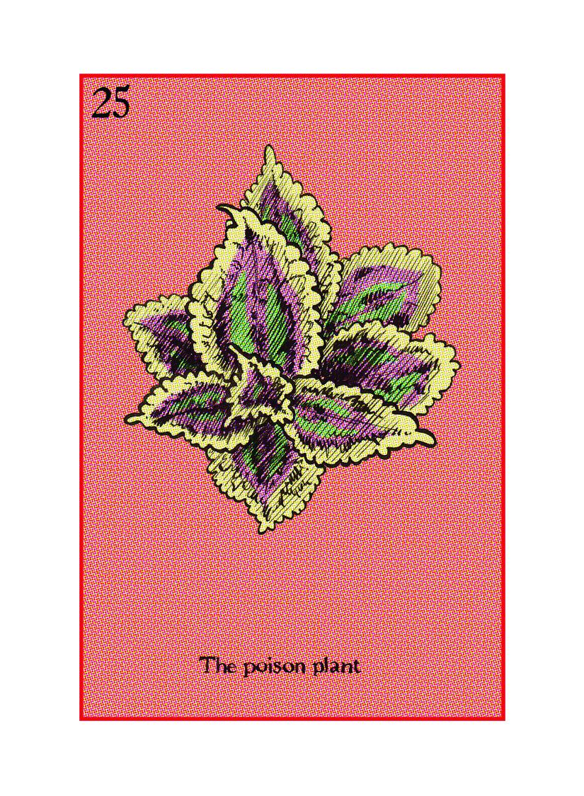 25 The Poison Plant.jpg