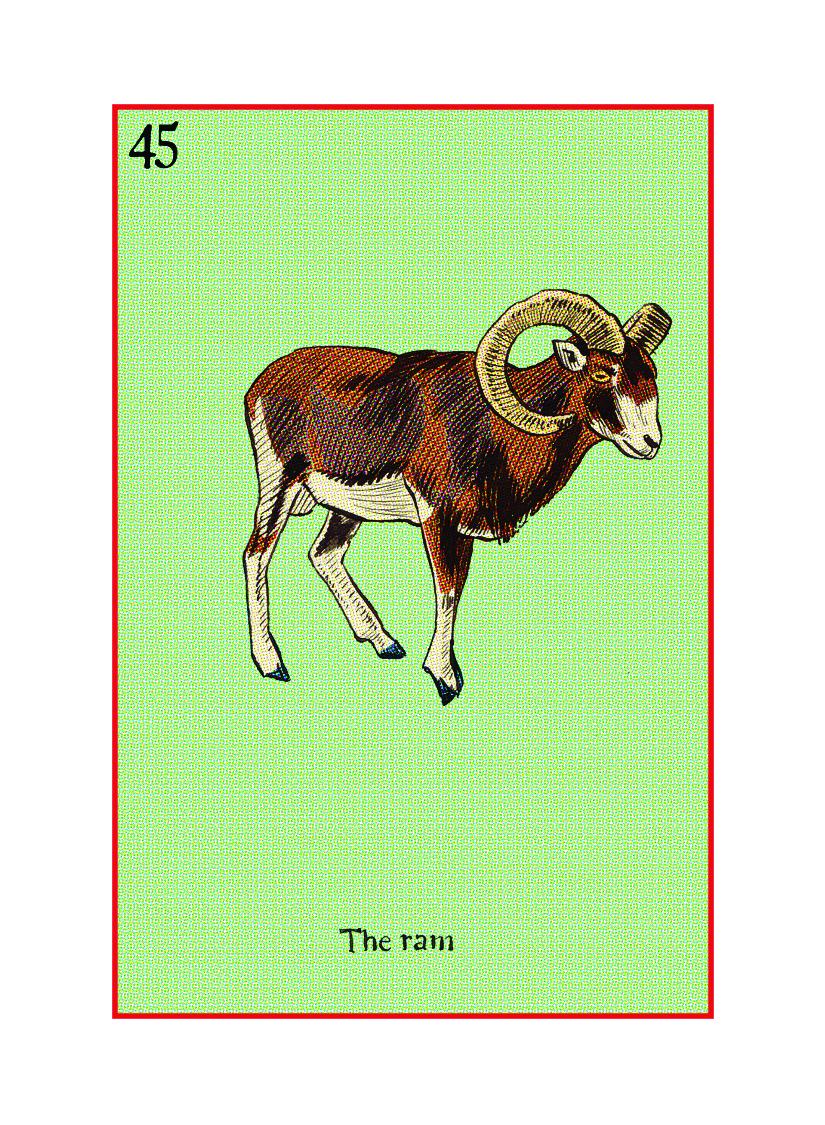 45 The Ram.jpg