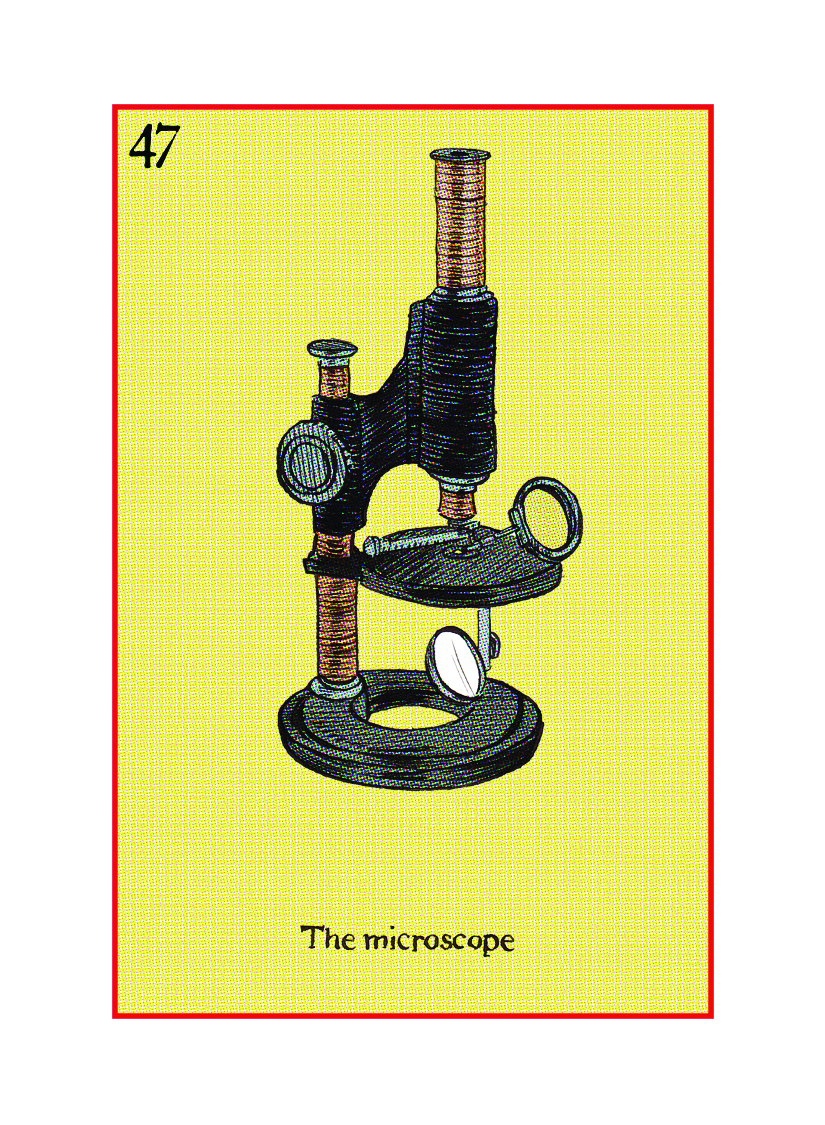 47 The Microscope.jpg