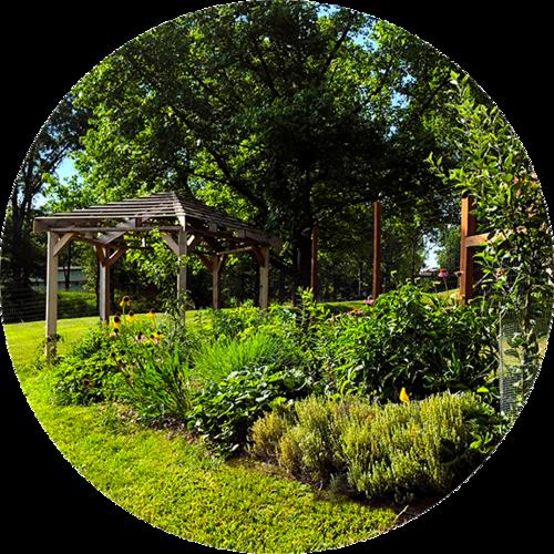 Principia Permaculture Orchard -