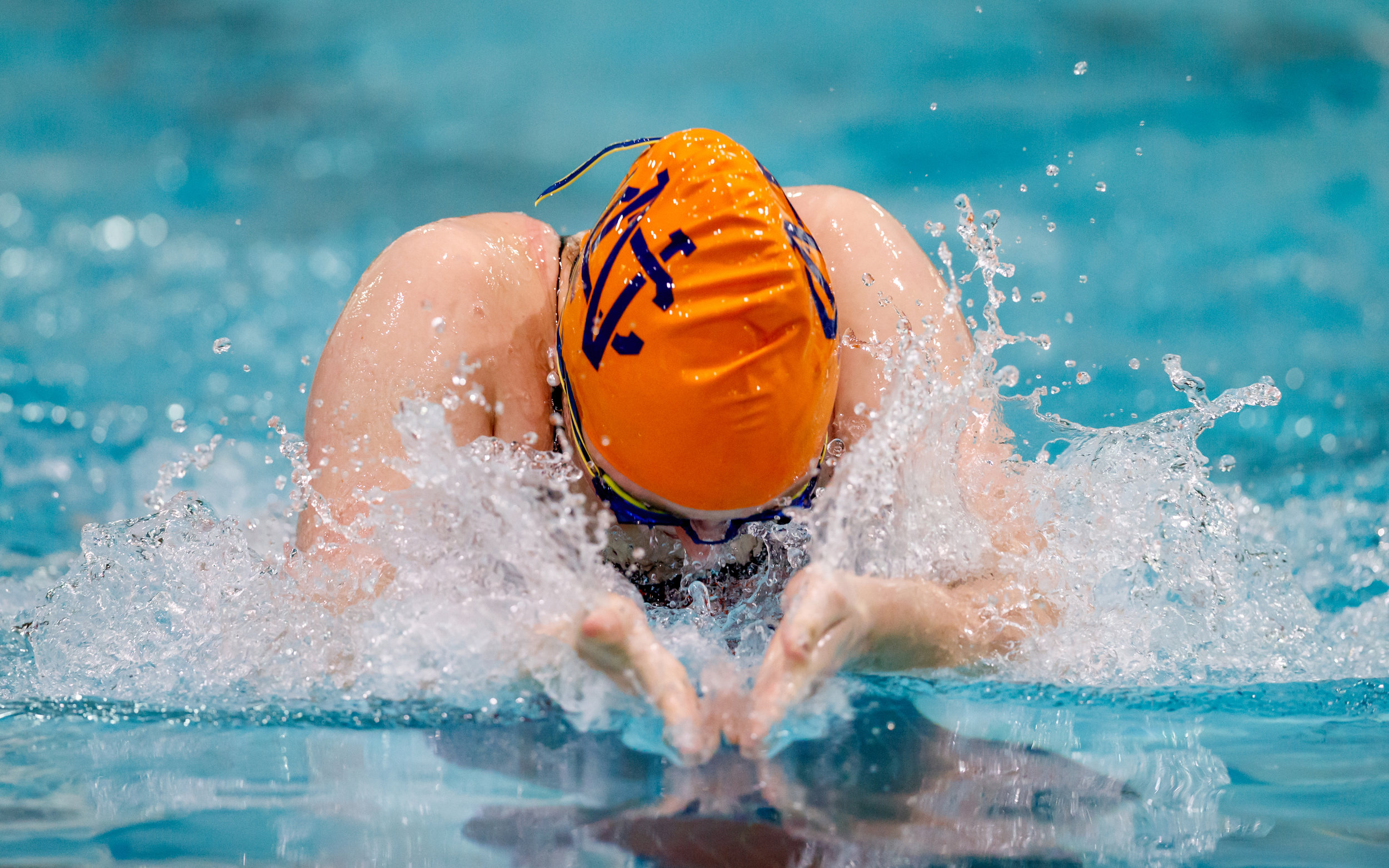 2016 N. Cobb Swim Meet 2023.jpg
