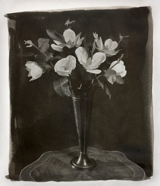 "Ted Preuss prints using platinum palladium on vellum for his ""Vase."" More features to be seen!"