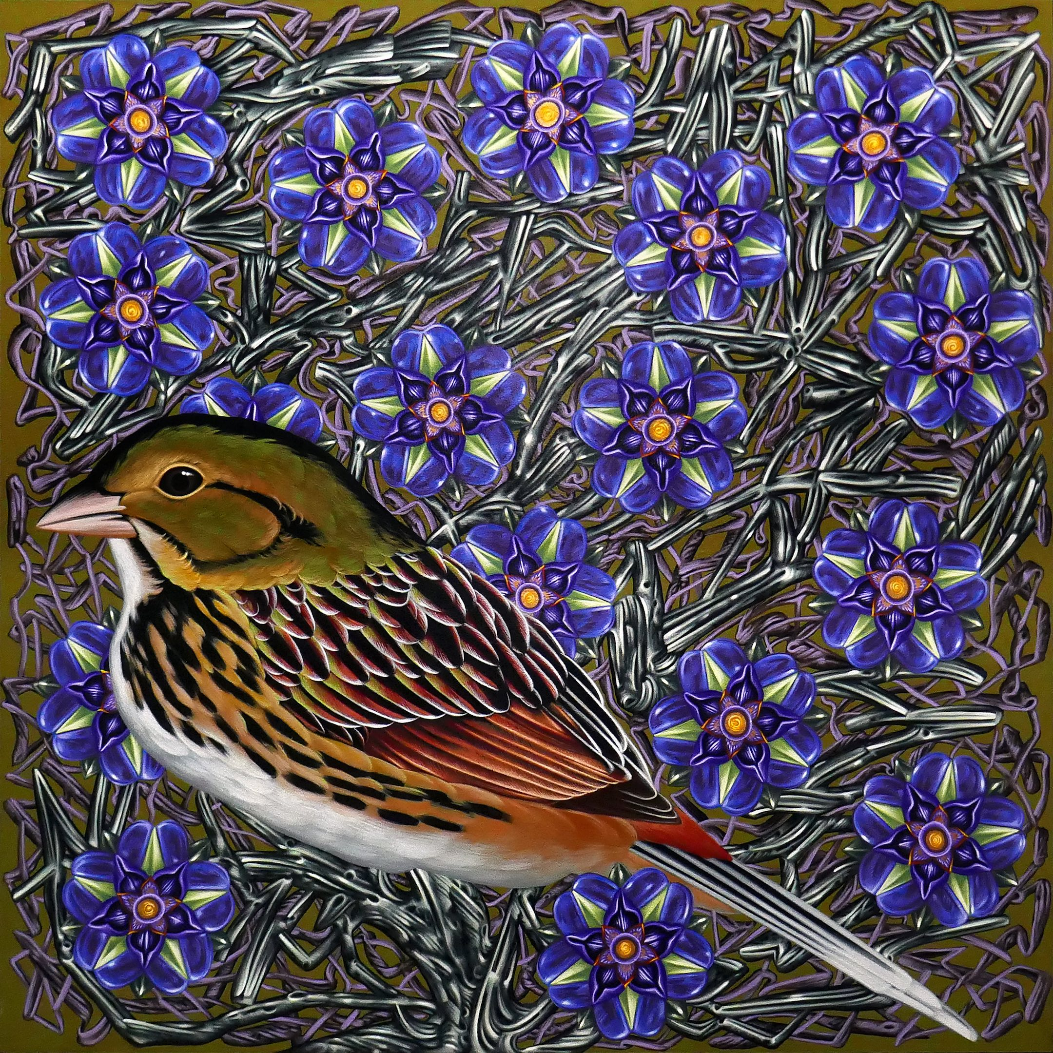 Exult 42 Henslow's Sparrow  30 x 30, Acrylic on panel