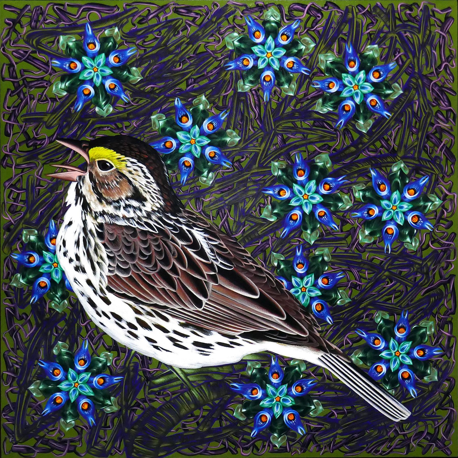 Exult 44 Savannah Sparrow  30x30 Acrylic on panel