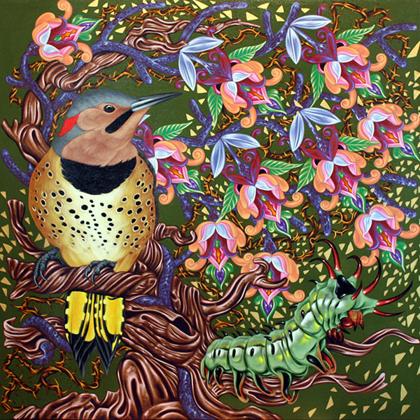 Exult 21 Northern Flicker,  30 x 30, Acrylic on panel