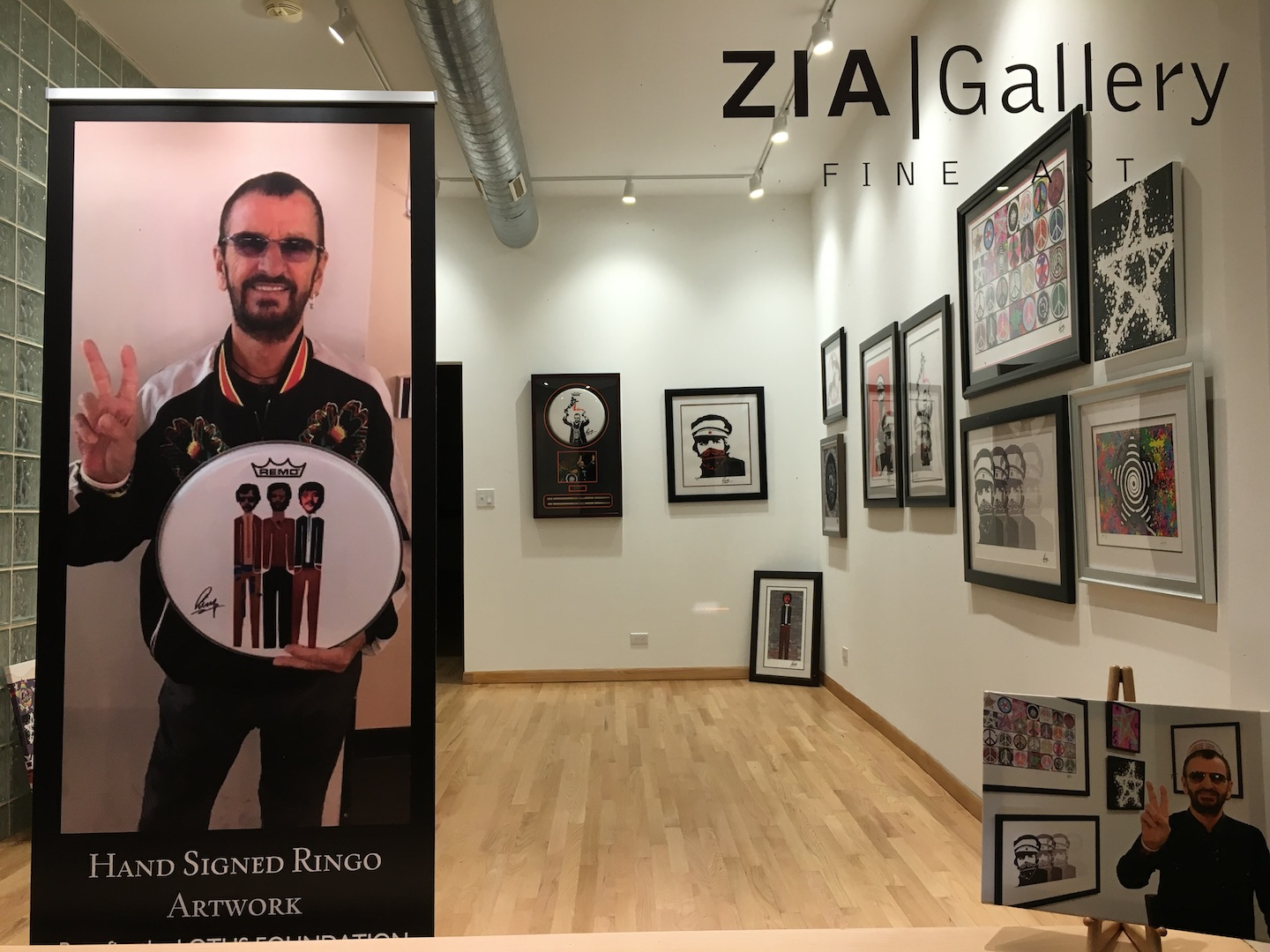 ZIA window at 44 medRes.jpg