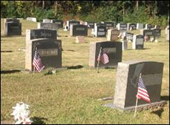 patriotflags.jpg