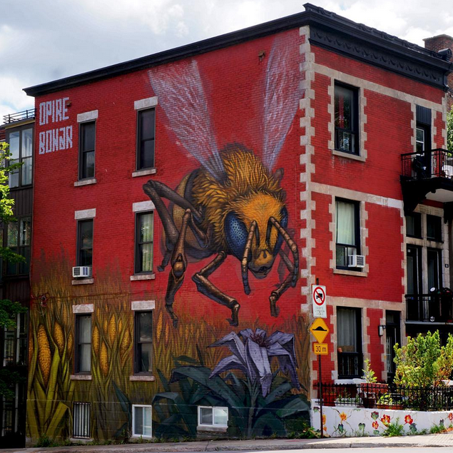 Work by Opire203 and Bonar. Image courtesy of @muralfestival.