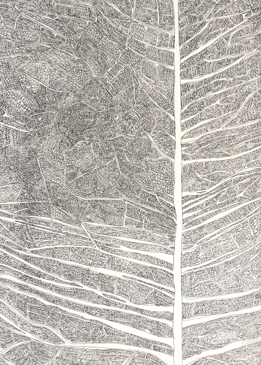 Navigation-2, hard-ground etching on zinc, printed on hahnemuhle, 22 x 29.5 inches, 2013