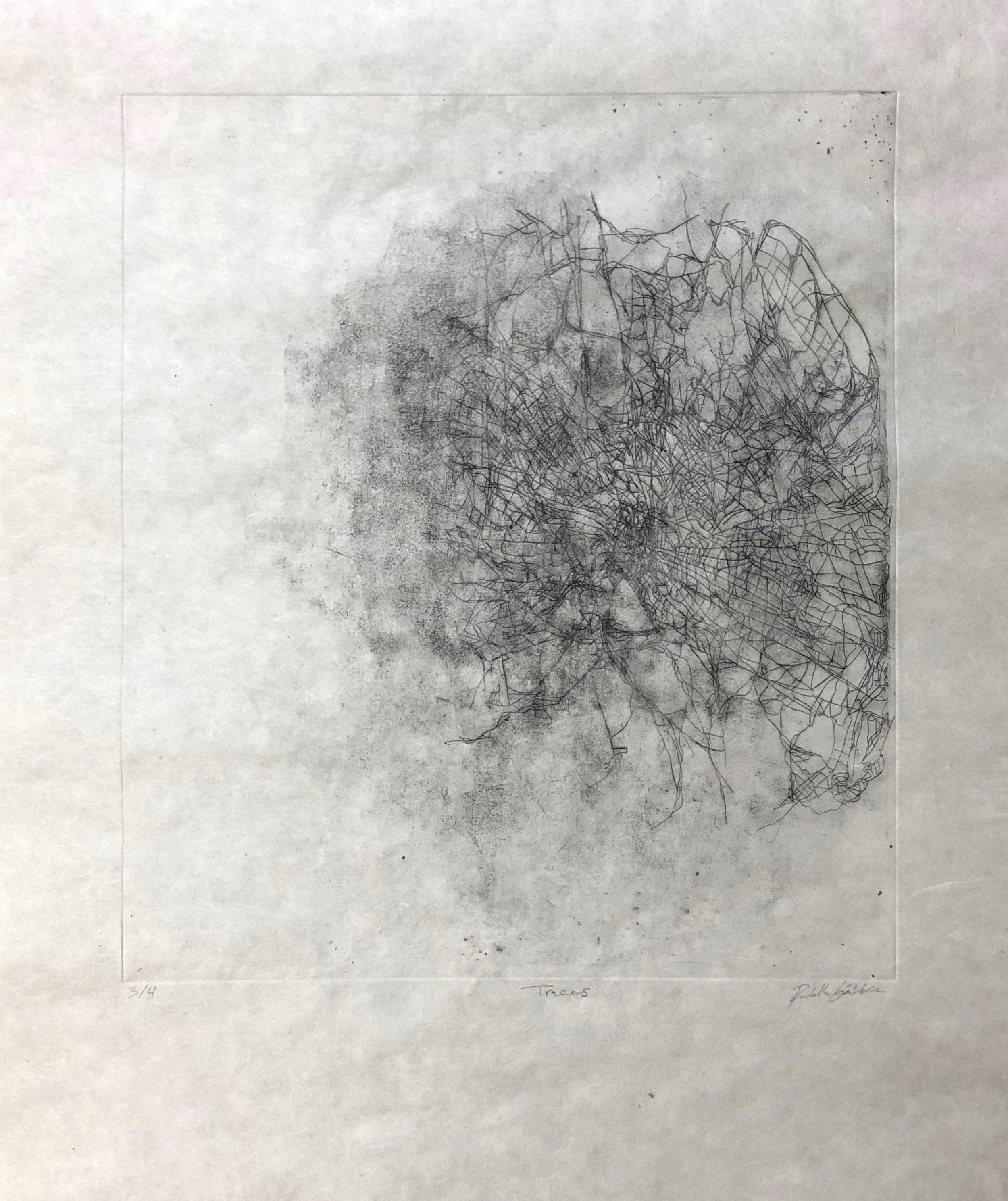 hidden traces.jpg