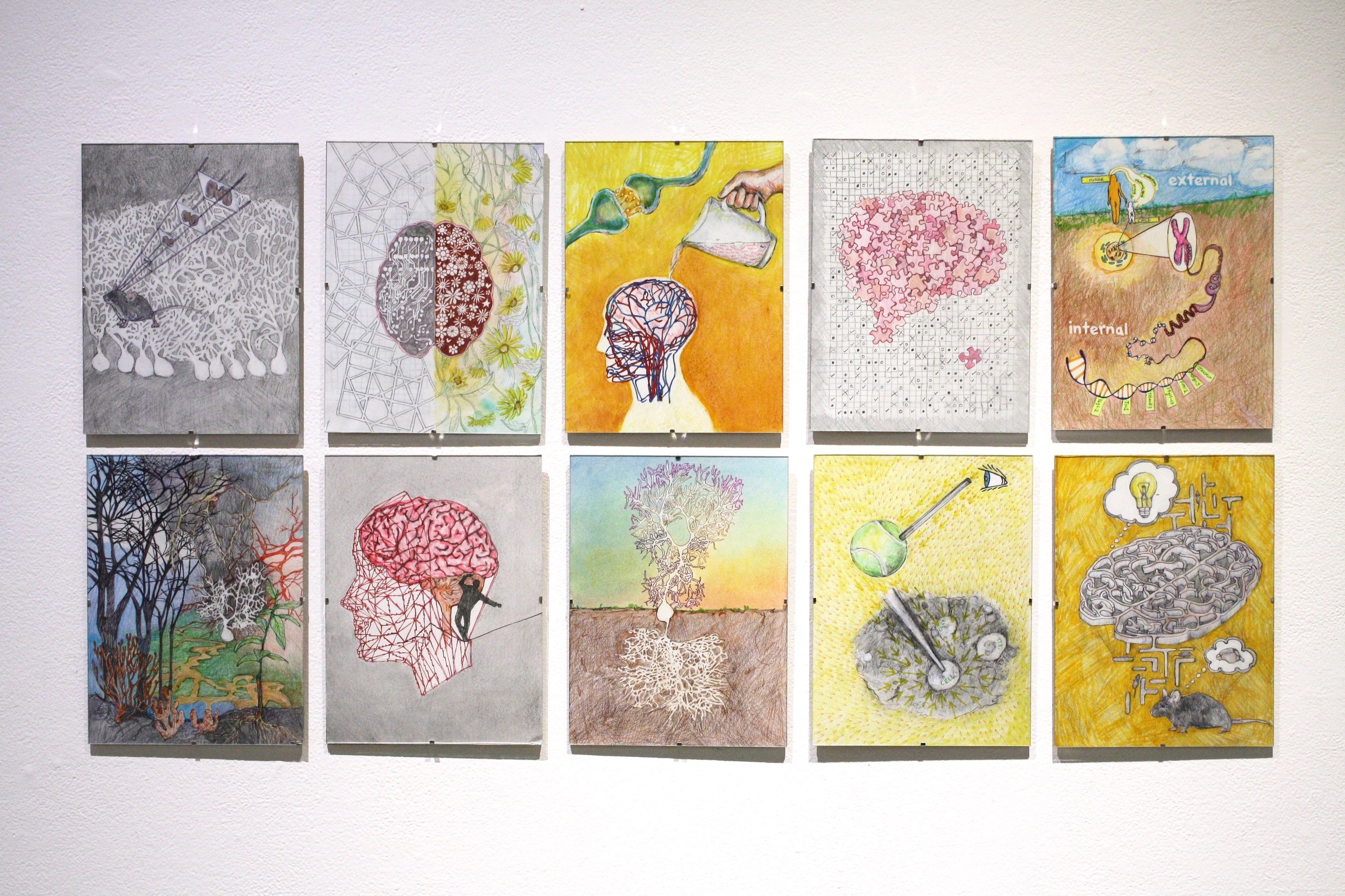 Richelle's illustrations for the science-art book.