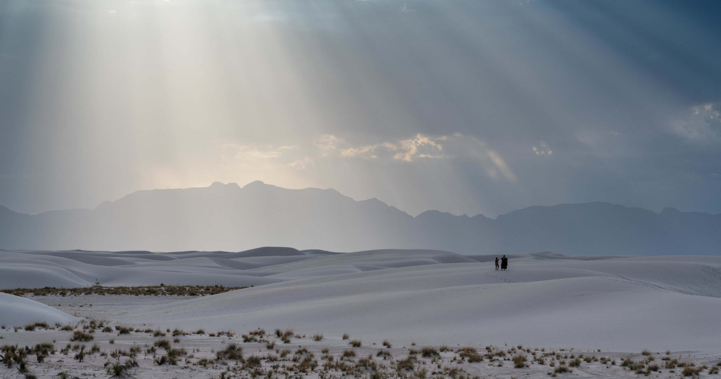 White Sands Desert Dwellers