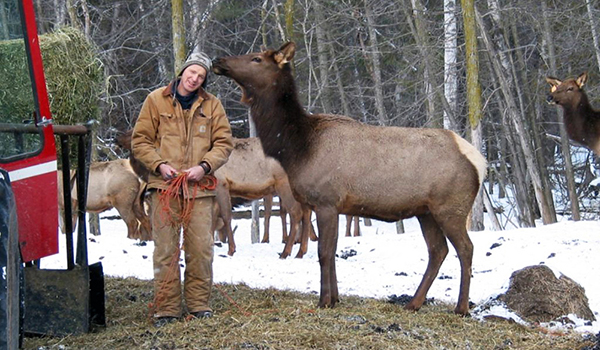 tom_elk_ranch_ottawa2.jpg
