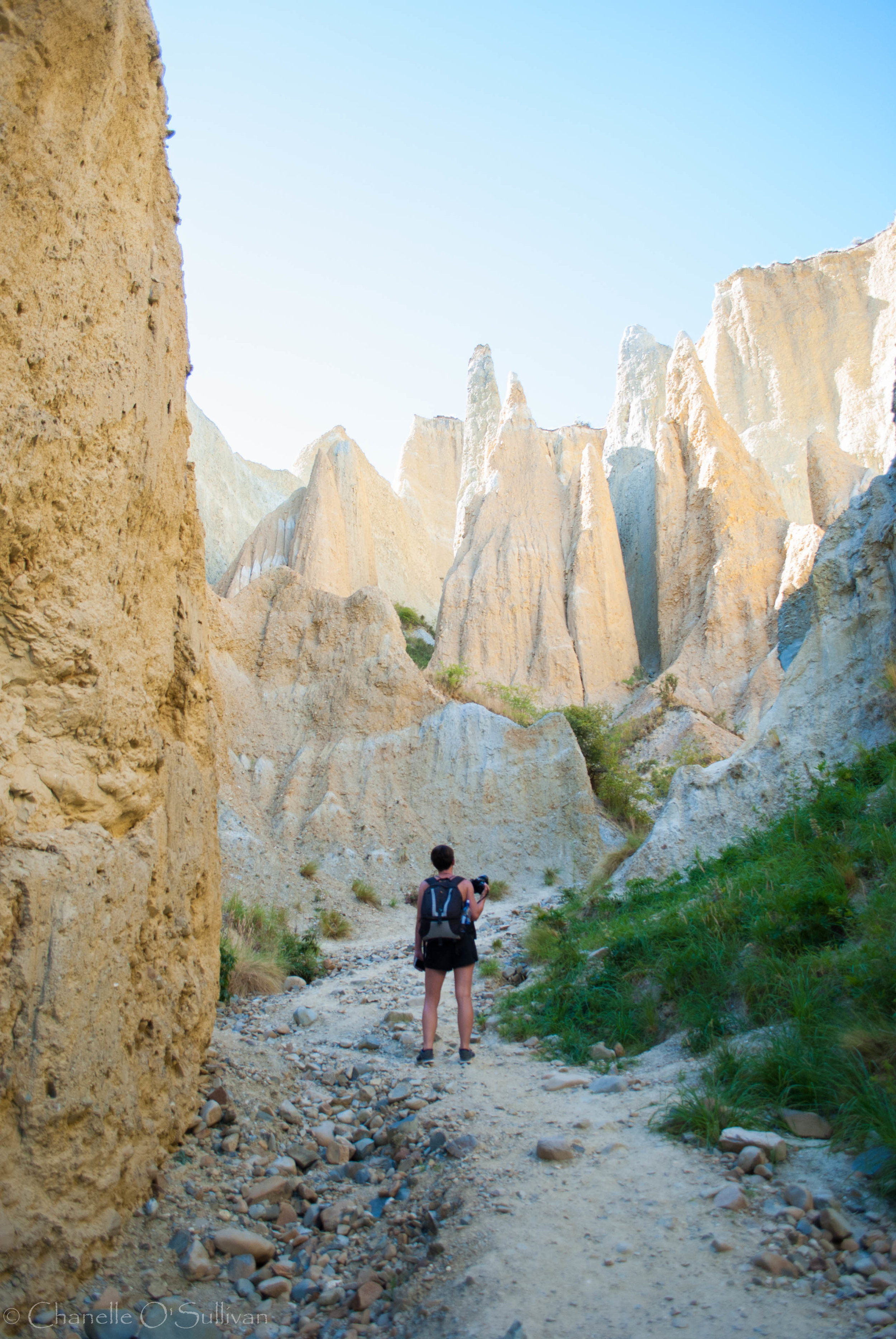 The Clay Cliffs are just out of Omarama and are an incredible, awe inspiring sight. Take $5 in cash for the gateway.